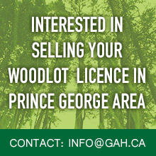 Selling your woodlot licence in Prince George area