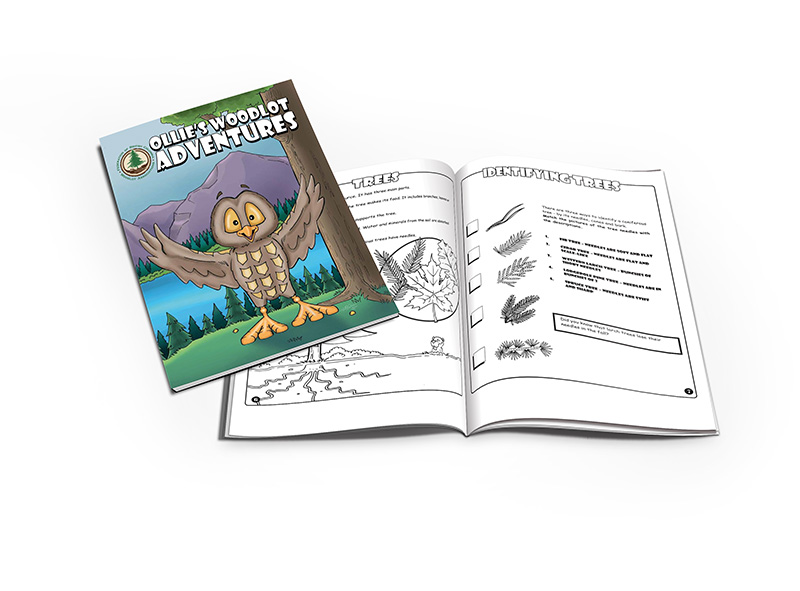 colouringbookmockup